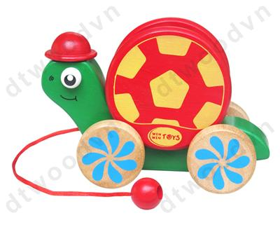 Funny Child Tortoise